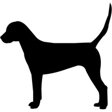 English Foxhound  Silhouette Vector
