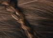 canvas print picture - Nahaufnahme von Haaren mit gepflochtenem Zopf