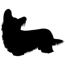 Skye Terrier  Silhouette Vector