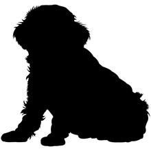 Toy Poodle  Silhouette Vector