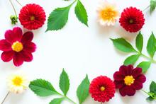 Frame Of Colorful Dahlia Flowe...