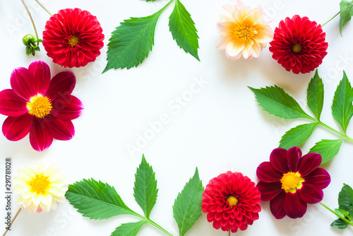 Poster de jardin Dahlia Frame of colorful dahlia flowers on a white background. Beautiful floral background