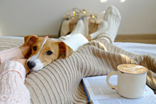Young Woman And Her Adorable Jack Russell Terrier Puppy Sitting On Couch Cozied Up, Covered With Blanket. Lazy Afternoon At Home With Loved Pet Concept. Close Up, Copy Space, Interior Background.
