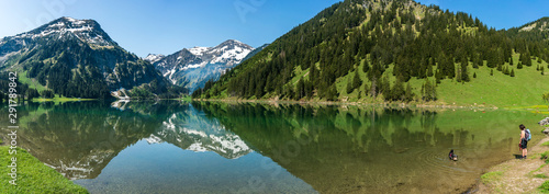 Montage in der Fensternische Pistazie Panorama of a dog playing in the Visalpsee mountain lake