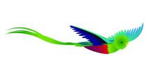 Green Bird, Quetzal, Cute Cartoon