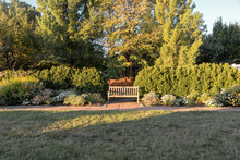 Park Bench With Multiple Trees And Flowers Around It