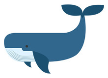 Blue Whale, Illustration, Vector On White Background.