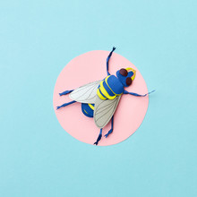 Creative Handcraft Paper Application With Blue Fly On A Round Place On A Light Blue Background. Flat Lay.
