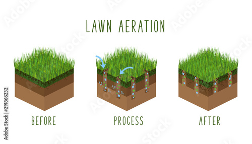 Photo Lawn Care Vector