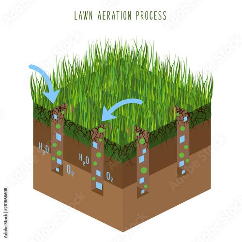 Valokuva Lawn Care Vector
