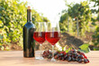 Glasses and bottle of red wine with fresh grapes on wooden table in vineyard