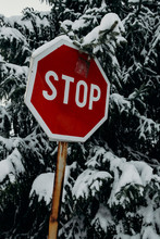 Stop Sign In The Forest On The...