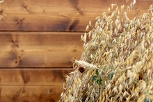 Bunch Of Cereal Ears Is On A Wooden Background. Autumn, Harvest, Agriculture Concept. Selective Focus.