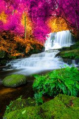 Panel Szklany Podświetlane Wodospad Amazing in nature, beautiful waterfall at colorful autumn forest in fall season
