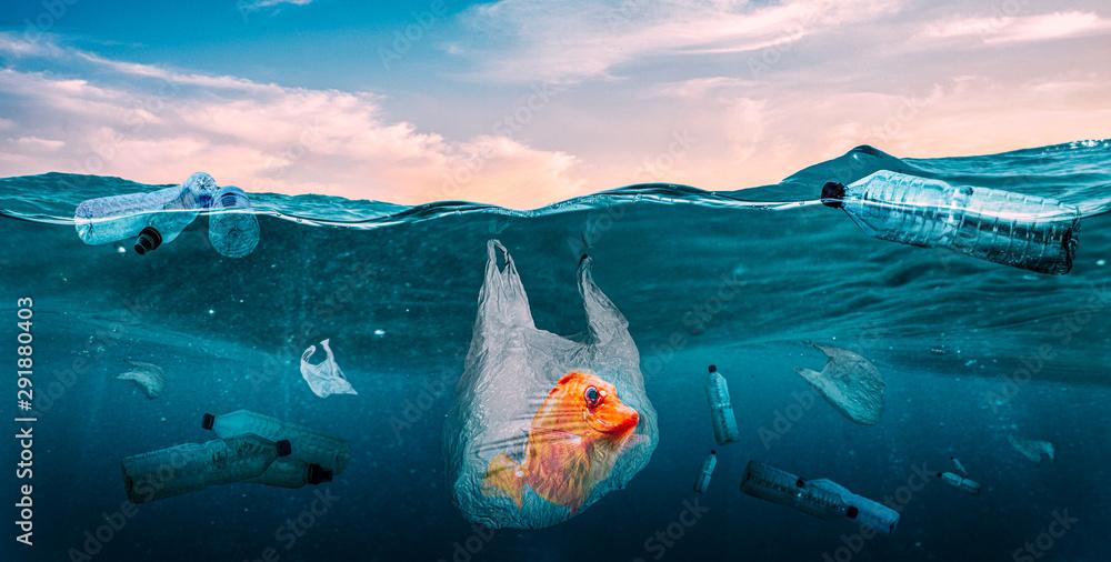 Fototapety, obrazy: Plastics in the seas. Global Problem