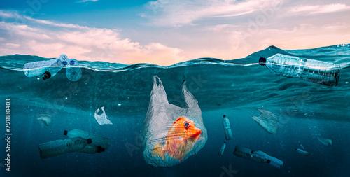 Plastics in the seas. Global Problem Canvas