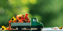 Lorry With Grapes And Flowers....