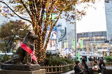 Hachiko Statue In Shibuya, Japan