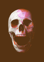 Engraving Colorful Low Poly Skull Vector Illustration Isolated On Brown BG