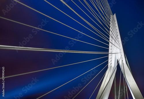 Foto auf Leinwand Rotterdam Rotterdam Erasmusbrücke Skyline Nacht