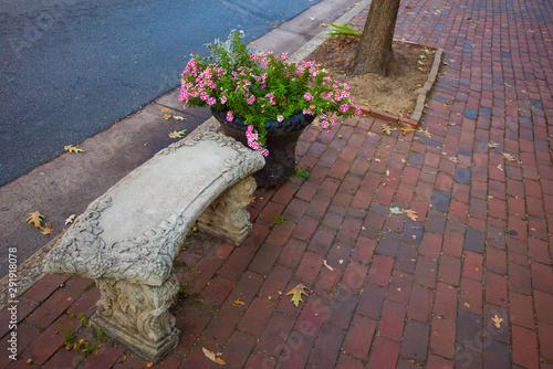Stone Bench, Alexandria, USA Canvas Print