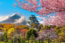 Osaka Castle And Full Cherry ...