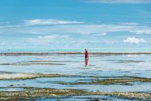 Woman In Ocean During Low Tide