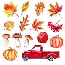 Watercolor Autumn Set With Red Truck, Leaves, Pumpkins, Mushrooms, Apple, Fall Yall