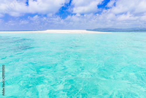 Canvas Prints Green coral バラス島