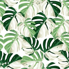 Fototapeta Inspiracje na wiosnę Tropic summer painting seamless pattern with exotic monstera leaves.