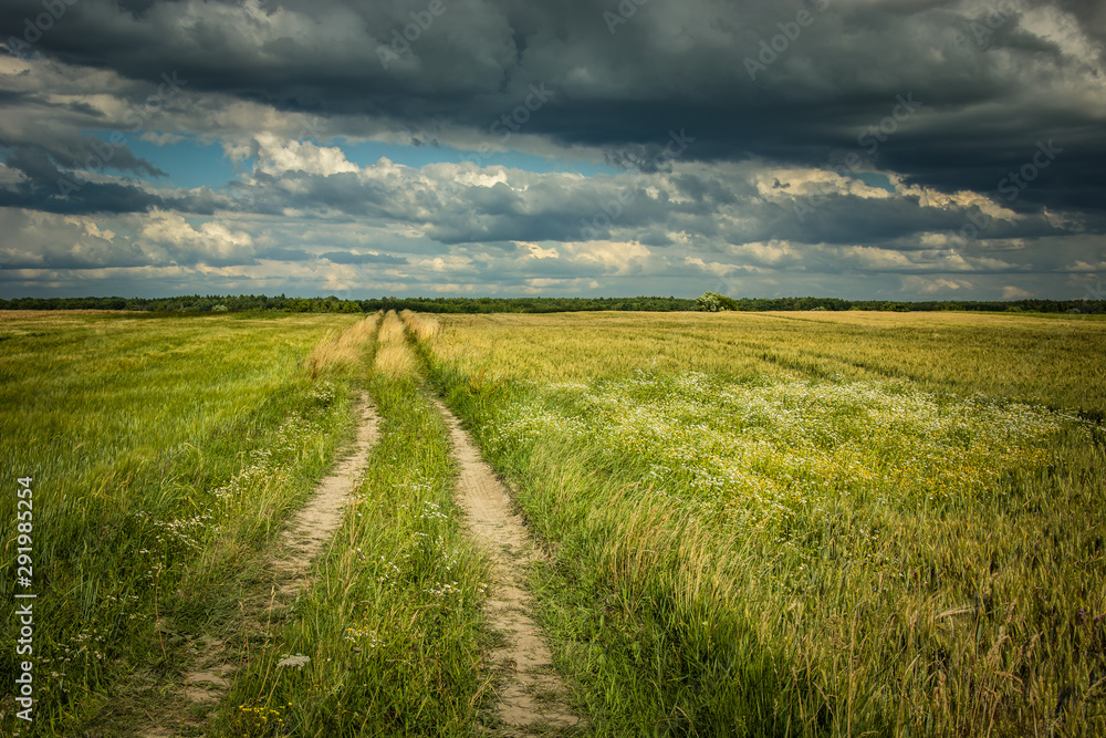Fototapeta Country road through fields and dark clouds on the sky