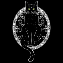 Black Cat With Green Eyes On The Background Of The Night Starry Sky And Autumn Oak Branches. Black And White Design