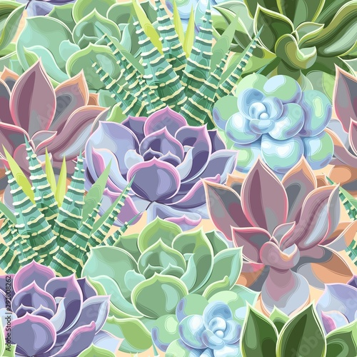 Fototapeta Vector seamless pattern with high detail succulent obraz
