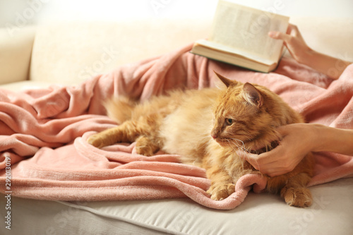Photo  Woman with cute red cat and book on sofa at home, closeup view