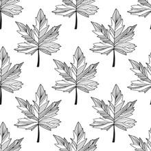Autumnal Leaves Pattern. Autum...