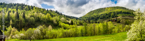 Poster Pistachio panorama of the Carpathian mountains