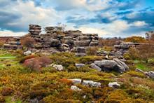Brimham Rocks. Yorkshire, Engl...