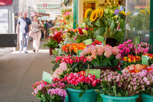 View Of Colourful Various Flowers In Plastic Box Are Sold At Corridor In Front Of Flower Stall Or Floral Shop Is Located In Outdoor Market In Europe. Typical Atmosphere Of Flower Store.