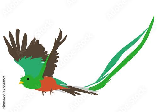 Cuadros en Lienzo Quetzal volador
