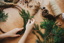 Hands Holding Fir Branches And Pine Cones, Thread, Scissors On Wooden Table. Details For Workshop Of Making Christmas Wreath. Making Rustic Christmas Wreath