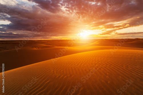 Foto auf Gartenposter Ziegel Sunset over the sand dunes in the desert