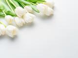 White tender tulips on white background. - 292122237