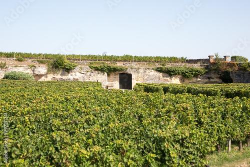 Photo Vineyards in Saint Emilion France underground cellar