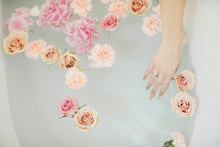 Hand Of A Young Girl Touches The Water With Flower Petals. Romantic Evening Of Two Lovers