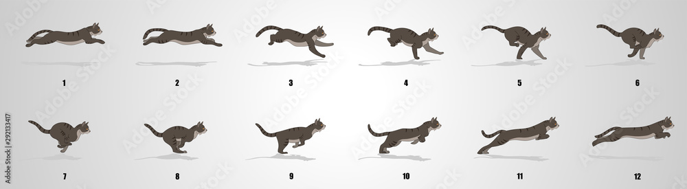 Fototapeta Cat Run cycle animation sequence