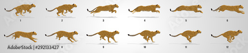 Fotografie, Tablou Cheetah run cycle animation sequence