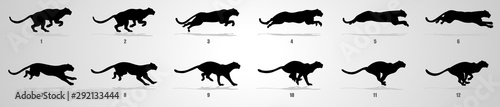 Fényképezés Cheetah run cycle animation sequence