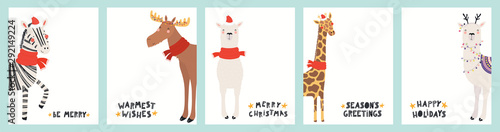 obraz dibond Collection of Christmas cards with cute zebra, giraffe, llama, moose in Santa hats, reindeer antlers, with text. Hand drawn vector illustration. Scandinavian style flat design. Concept for kids print.