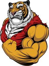 Ferocious Tiger Strong Bodybuilder