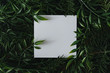 Leinwanddruck Bild Creative winter layout made of branches and leaves with paper card note. Flat lay. Nature concept